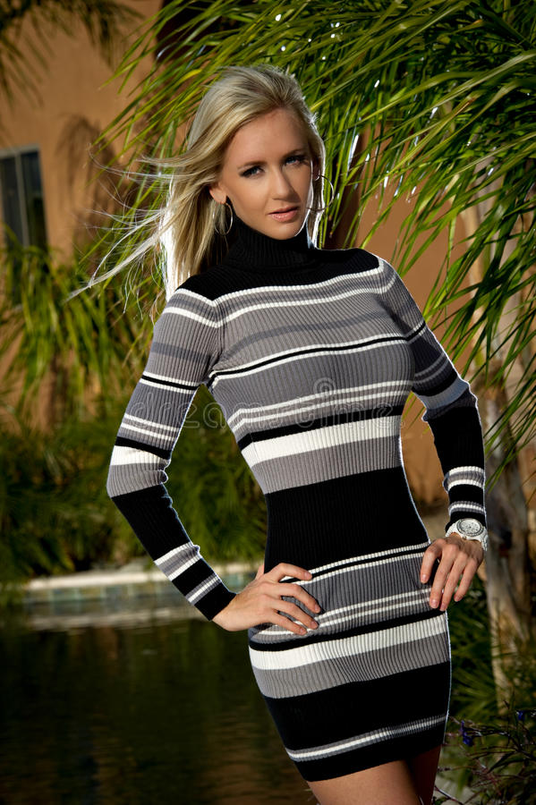 Download Confident Beauty In A Sweater Dress Stock Image - Image: 23142439