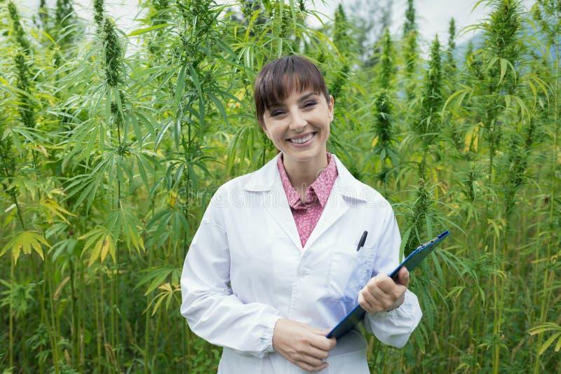 Confident doctor posing in a hemp field stock photos