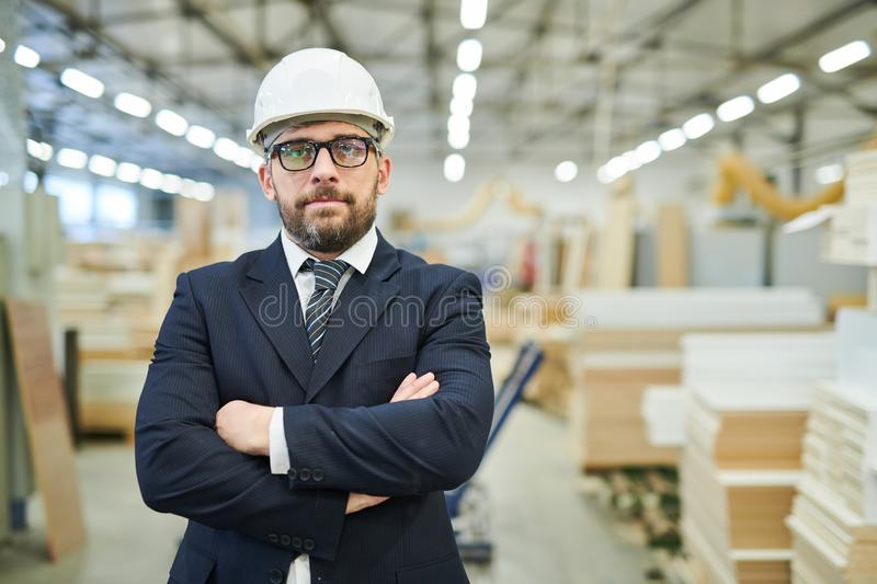Confident factory investor in hardhat royalty free stock image