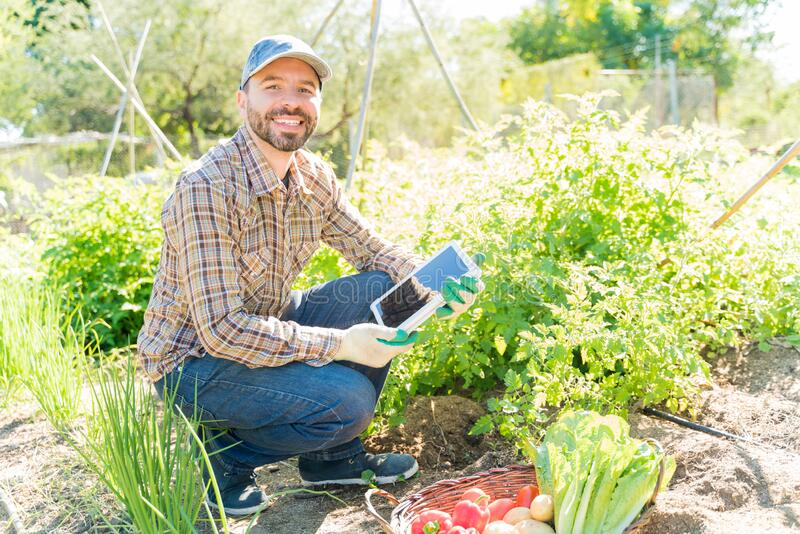 Confident Farmer With Digital Tablet At Vegetable Garden stock photo