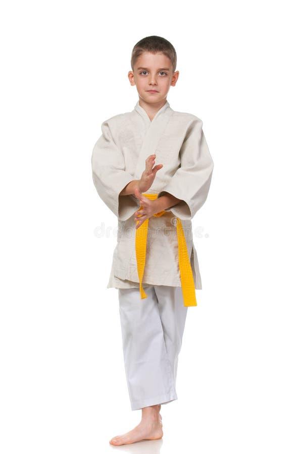 Download Confident Serious Boy In Kimono Stock Image - Image of ninja, white: 22049305