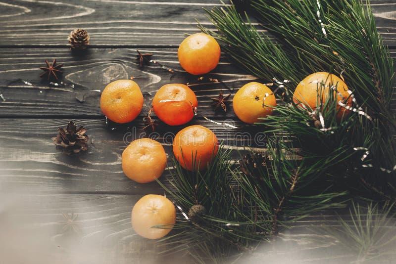 Configuração do plano do Natal tangerinas e ramos anis do abeto e pinho c fotos de stock royalty free