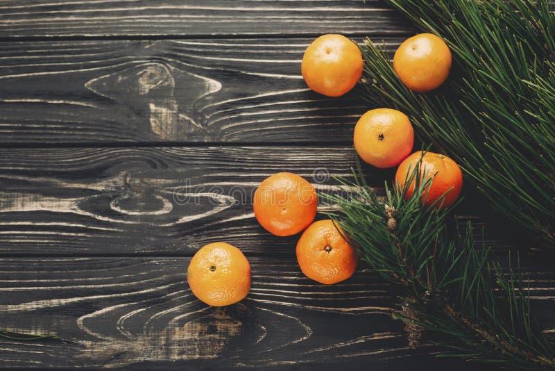 Configuração do plano do Natal tangerinas e ramos anis do abeto e pinho c fotografia de stock