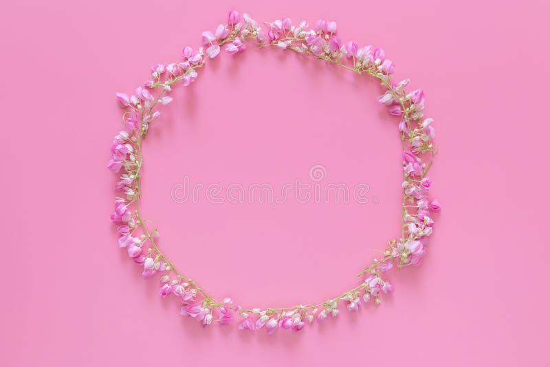 Configuração lisa da coroa da flor, círculo floral da grinalda feito das flores cor-de-rosa isoladas no fundo cor-de-rosa, vista  fotos de stock
