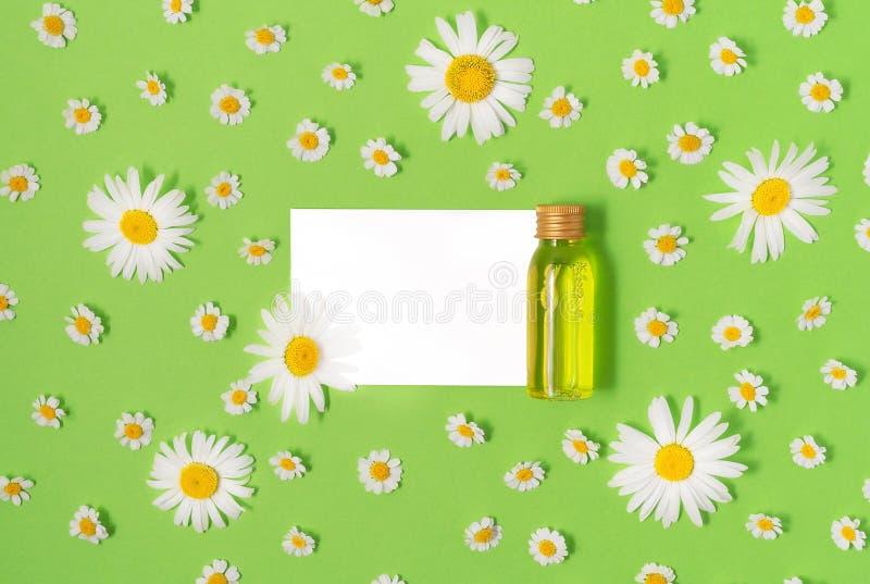 Configuração lisa da garrafa pequena do modelo com o produto cosmético dos termas e do cartão branco no fundo verde com fresco fotografia de stock royalty free
