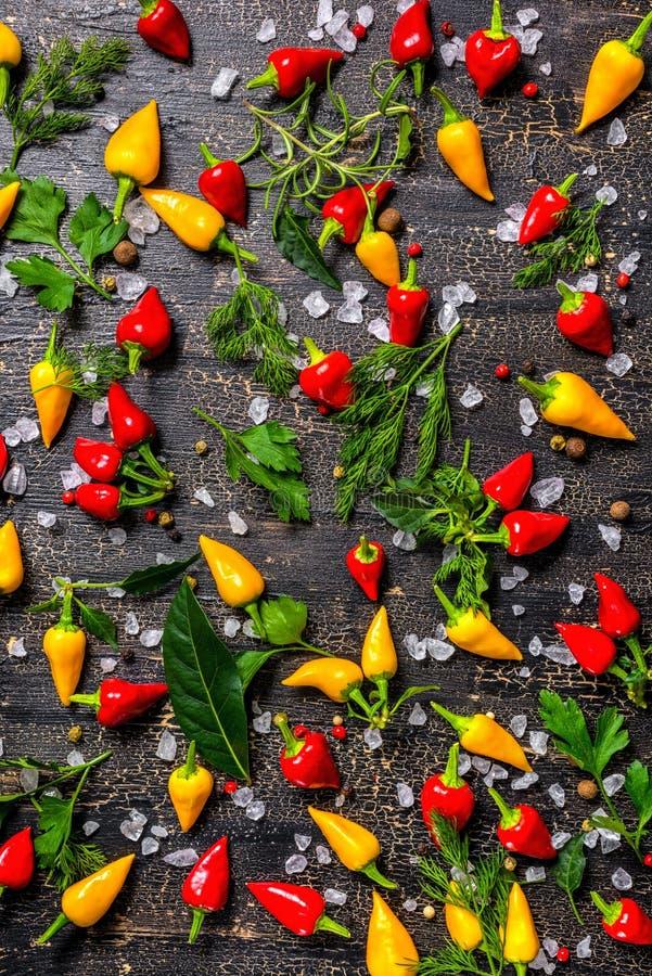 Configuração lisa de especiarias decorativas, pimentas secas, sal do mar, diferente fotografia de stock royalty free