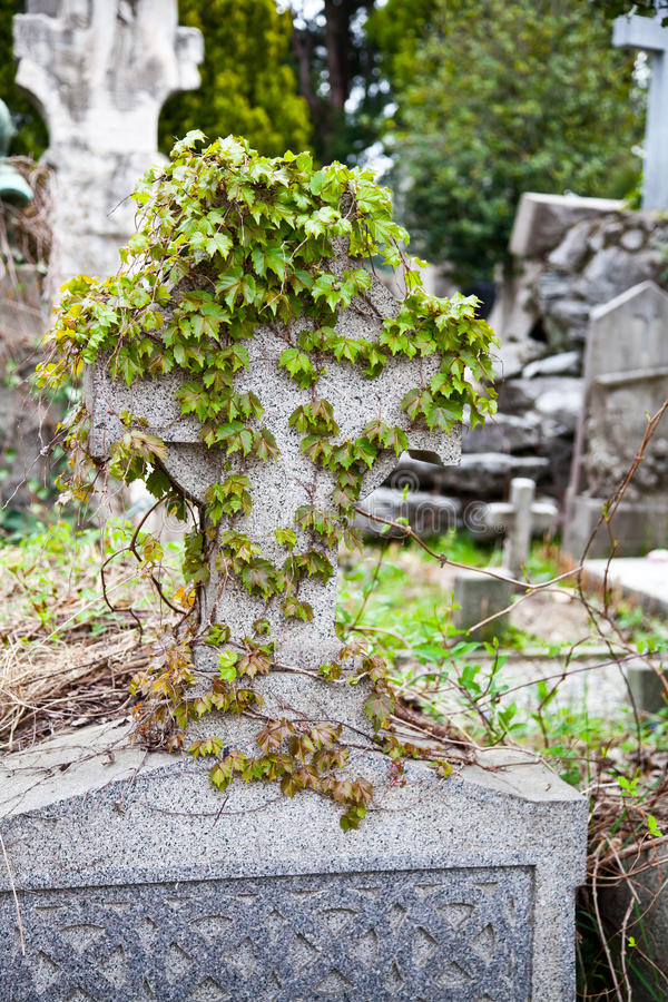 Download Configuración Del Cementerio - Europa Foto de archivo - Imagen de cementerio, configuración: 42435620