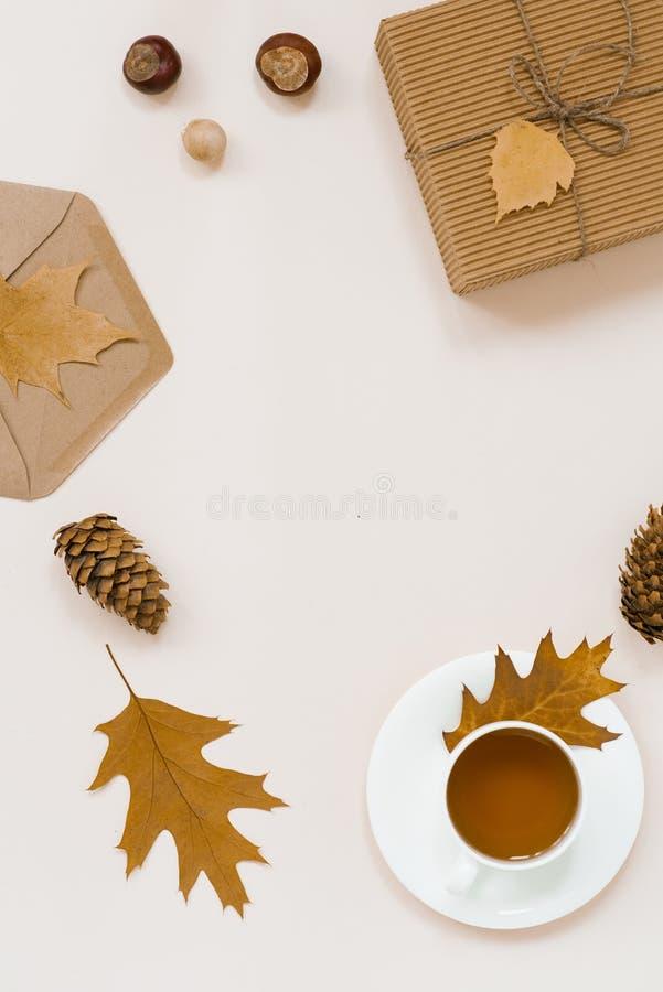 Configuration automnale d'appartement avec le plaid tricoté blanc, la tasse chaude de thé et les feuilles brunes tombées, envelop photos stock