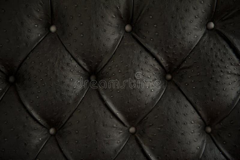Configuration de capitonnage noir de cuir véritable. photos stock