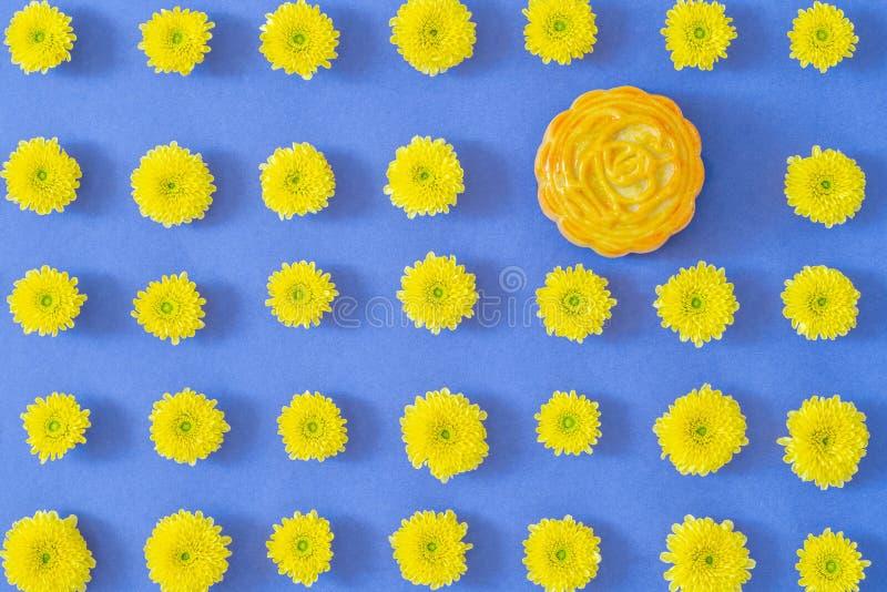 Configuration de fleur Le Mooncake, chrysanthème jaune fleurit sur le fond bleu Nourriture chinoise de festival de mi-automne photographie stock libre de droits