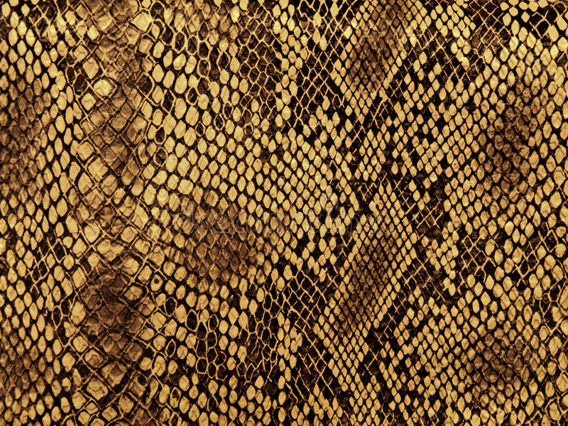 Configuration de peau de serpent photo stock