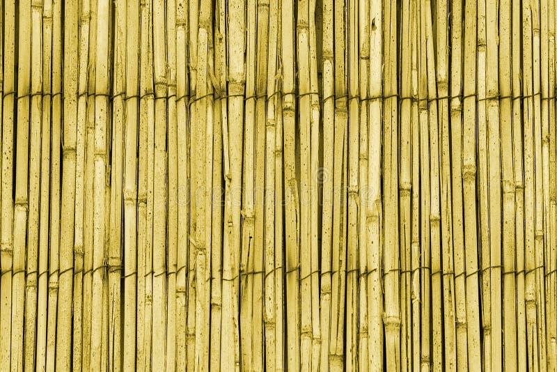 Configuration de toit de canne photos stock