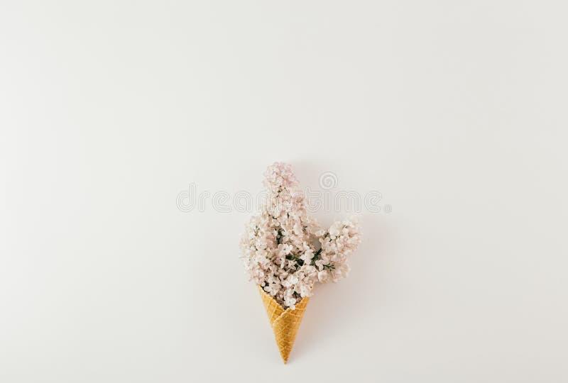 Configuration plate de ressort minimal blanc de fond de fleurs de branche de cornet de cr?me glac?e de vue sup?rieure photos stock