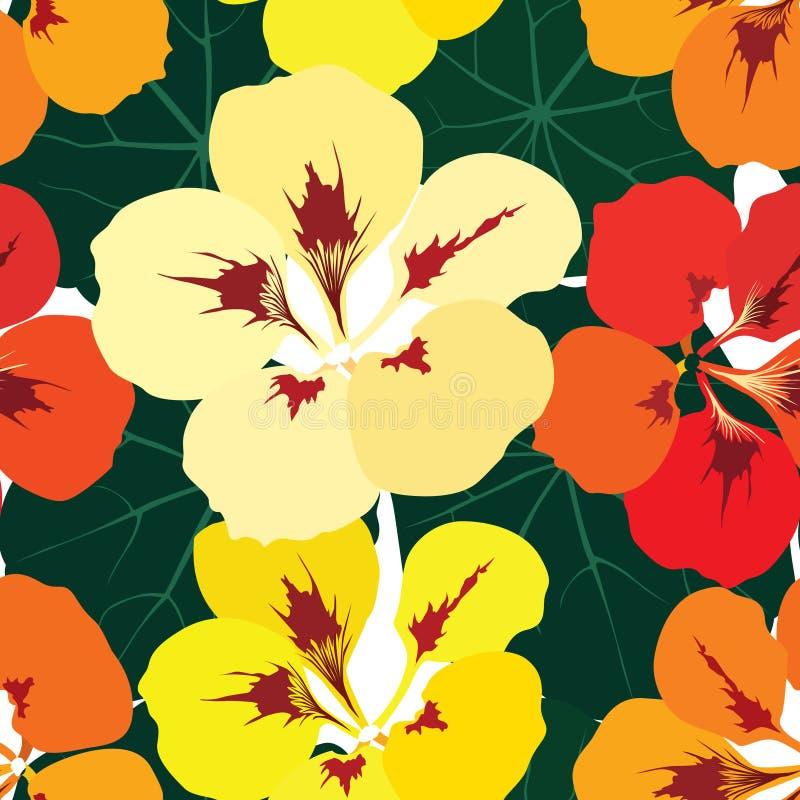 Configuration sans joint avec le nasturce de fleurs illustration libre de droits