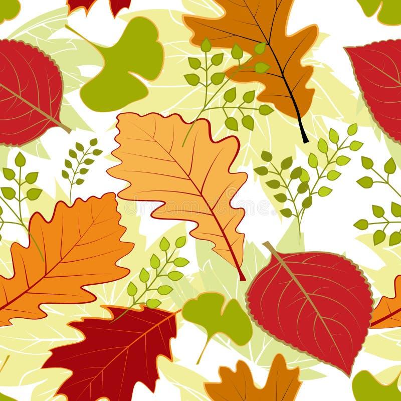 Configuration sans joint colorée de lames d'automne image libre de droits
