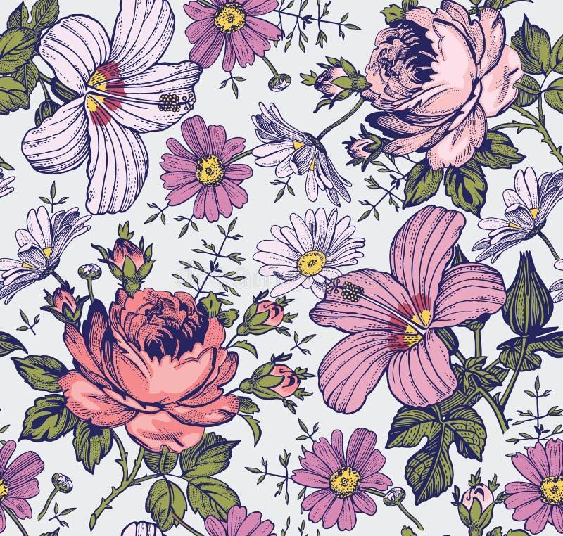 Configuration sans joint Fleurs d'isolement réalistes Fond de cru Mauve de ketmie de Rose de camomille wallpaper Gravure de dessi images stock
