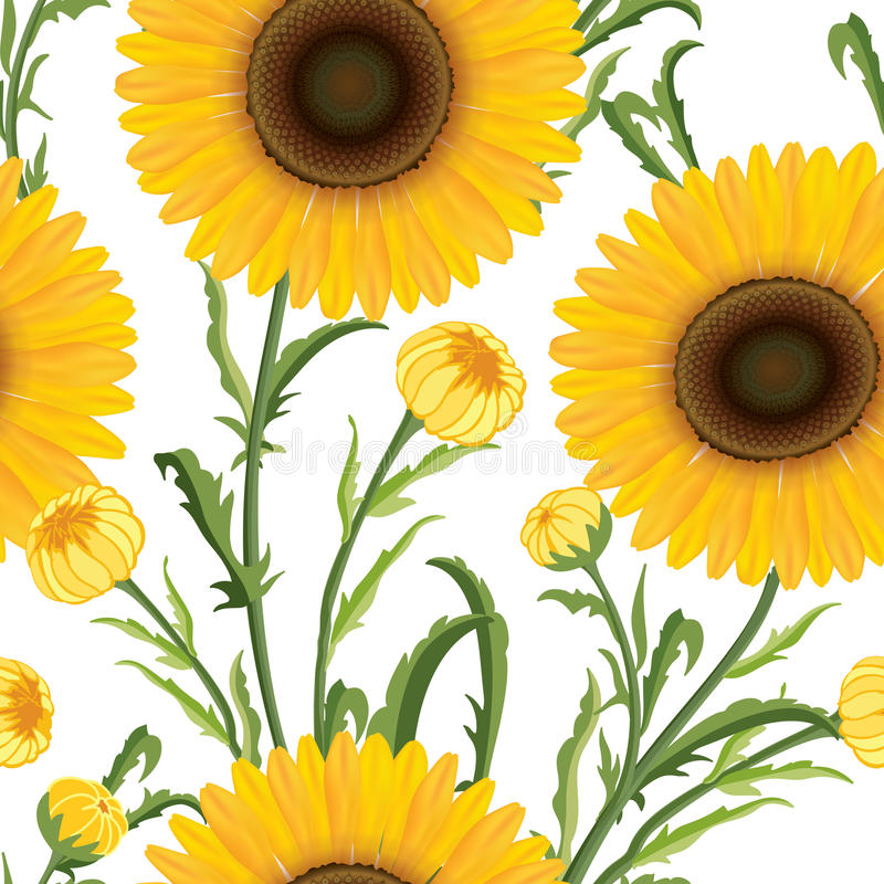 Configuration sans joint florale Fond de fleur Ornamen floraux de tuile illustration de vecteur