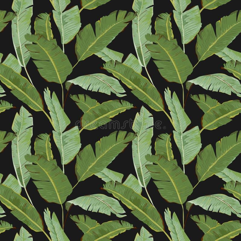 Configuration sans joint Fond tropical de palmettes Feuilles de banane illustration libre de droits