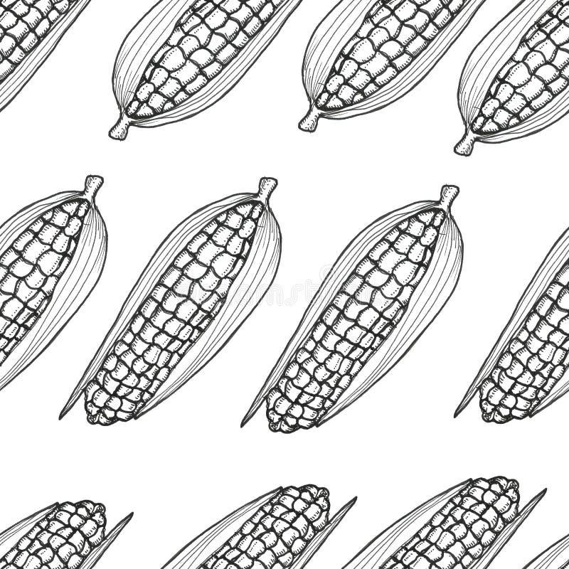 Configuration sans joint tirée par la main Fond de récolte d'automne grains illustration stock