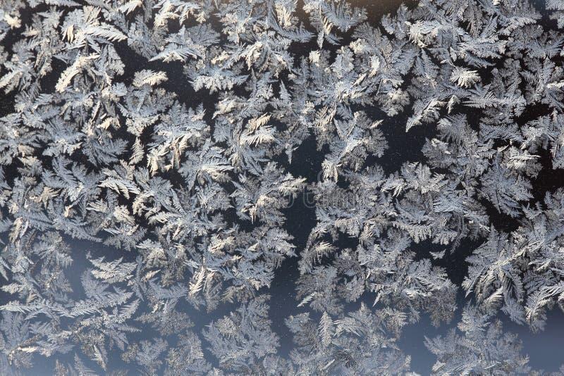 Configurations de l'hiver photo stock