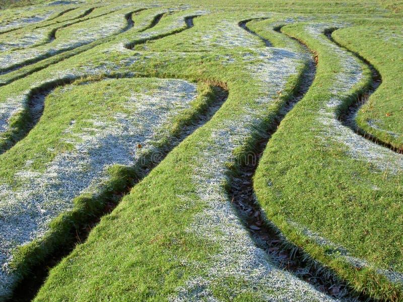 Configurations de labyrinthe dans l'herbe photo stock