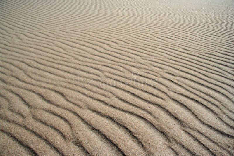 Configurations de plage photo libre de droits
