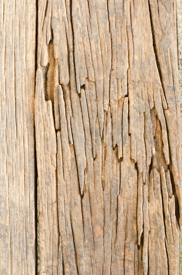 Configurations sur le vieux bois. image libre de droits