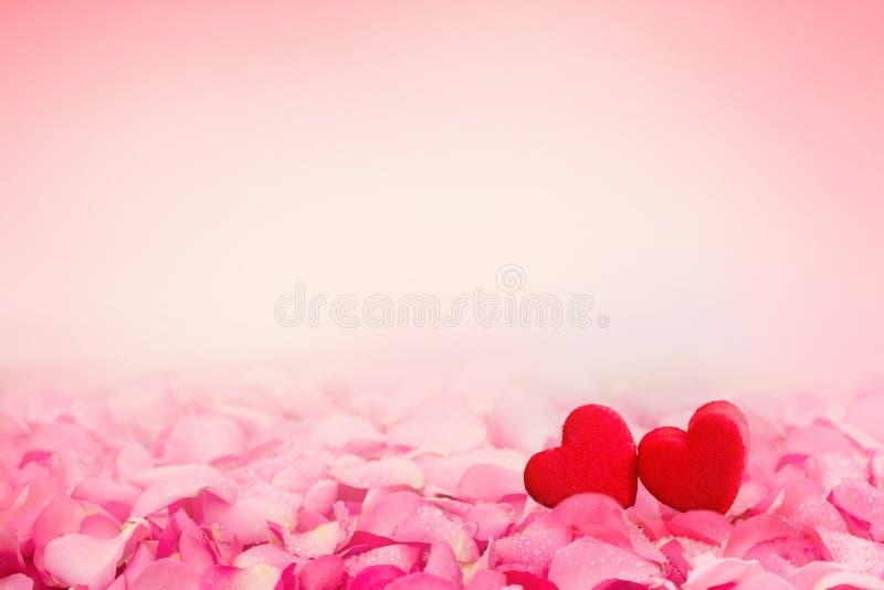 Confine astratto del fondo di bello pe dolce fresco della rosa di rosa fotografie stock