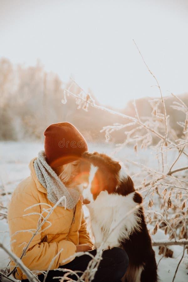 Confine in bianco e nero sveglio lanuginoso adorabile colly che sono preparati e ragazza di coccole in un parco luci e cespugli s fotografie stock libere da diritti