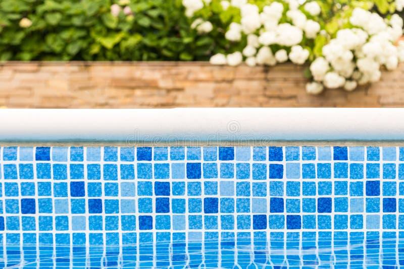 Confine blu della piscina del mosaico con i fiori e giardino verde sui precedenti fotografie stock