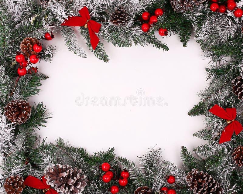 Confine decorativo di Natale con le pigne e le bacche dell'agrifoglio immagini stock