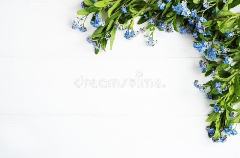 Confine dei fiori dei nontiscordardime immagine stock