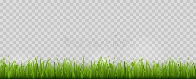 Confine dell'erba verde Isolato Illustrazione di vettore illustrazione di stock