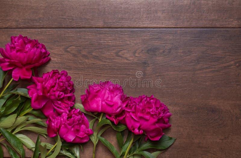 Confine delle peonie su un fondo di legno Priorità bassa di disegno floreale?, contesto, disegno dell'illustrazione Fiori rosa e  fotografia stock