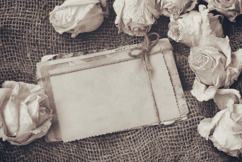 Confine delle rose bianche asciutte, pila di vecchie cartoline, immagine di seppia immagine stock