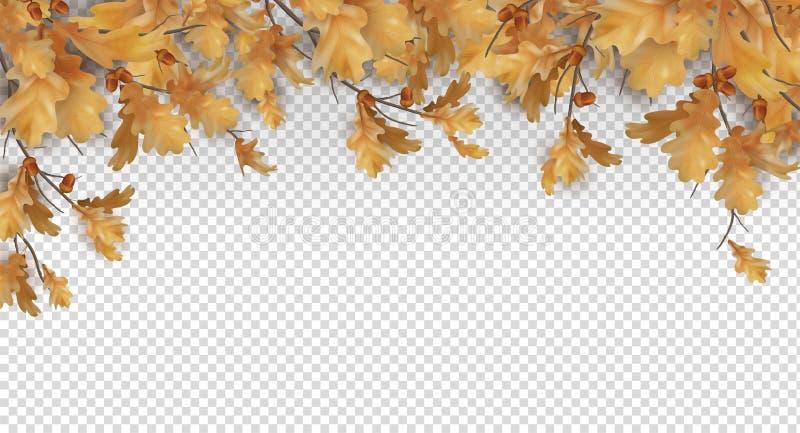 Confine di autunno con le foglie della quercia illustrazione di stock