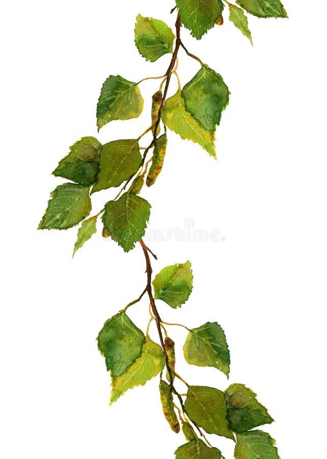 Confine la raya con las hojas frescas verdes de la rama del abedul stock de ilustración