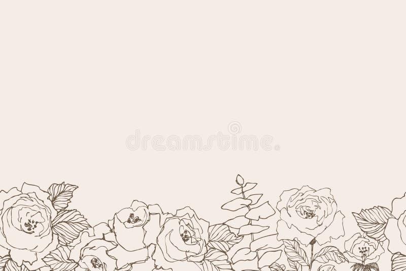 Confine senza cuciture di progettazione floreale di vettore Rose lineari, eucalyptus, bacche, siluetta bianca del witn delle fogl illustrazione vettoriale