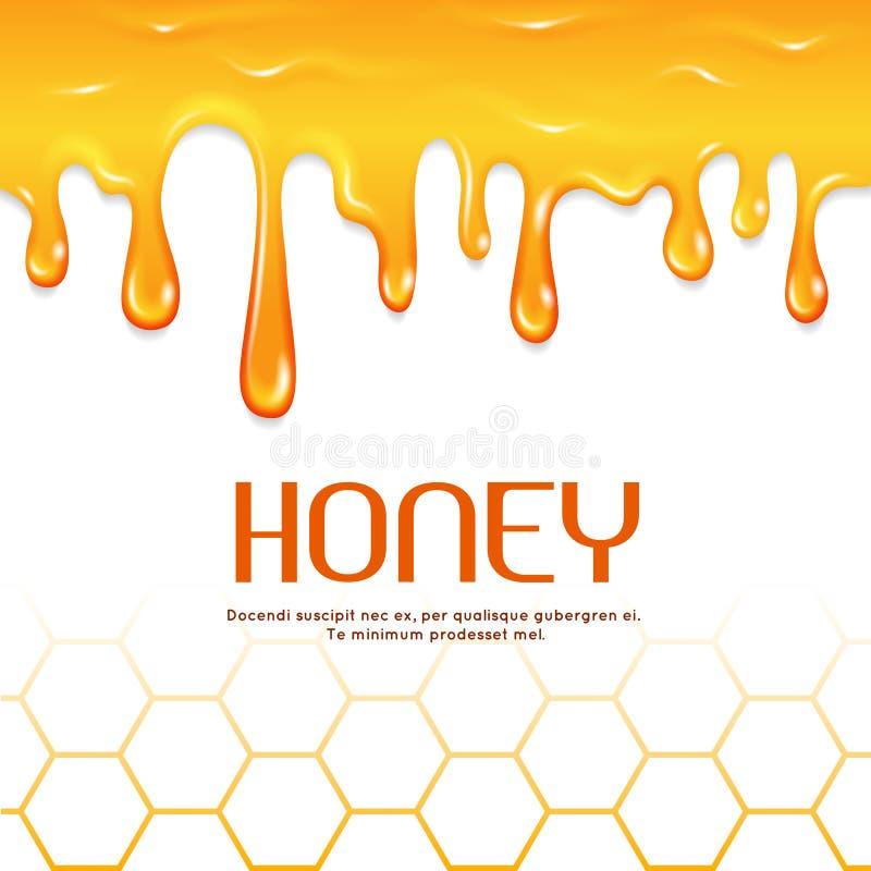 Confine senza cuciture di vettore del miele della sgocciolatura illustrazione di stock