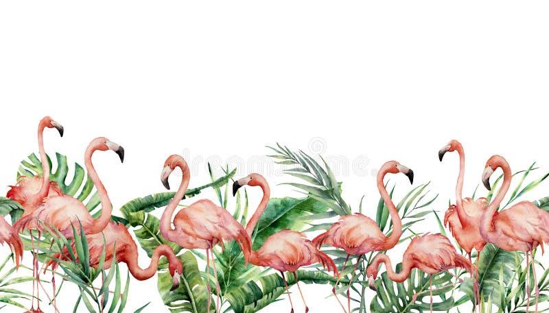 Confine senza cuciture tropicale dell'acquerello con il fenicottero e le foglie esotiche Illustrazione floreale dipinta a mano co illustrazione vettoriale