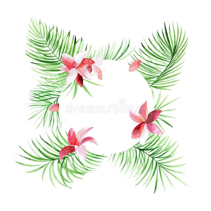 Confine tropicale delle foglie di palma del cerchio con i fiori rosa Fogliame esotico dell'albero fatto nello stile dell'acquerel illustrazione di stock