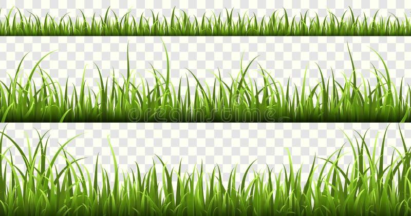 Confini dell'erba verde Insieme di vettore isolato erba del prato inglese degli elementi della molla delle erbe della natura di p illustrazione vettoriale