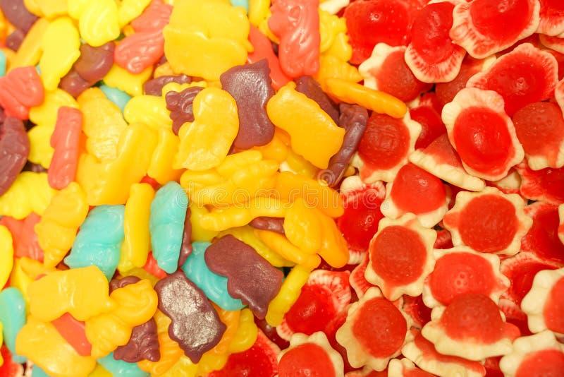 Confiture d'oranges multicolore délicieuse de fruit sucreries lumineuses malsaines en vrac fin différente de photo de gelée bonbo images libres de droits