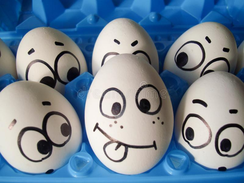 Conflict office work concept. photo for your. Design. funny eggs in a box stock image