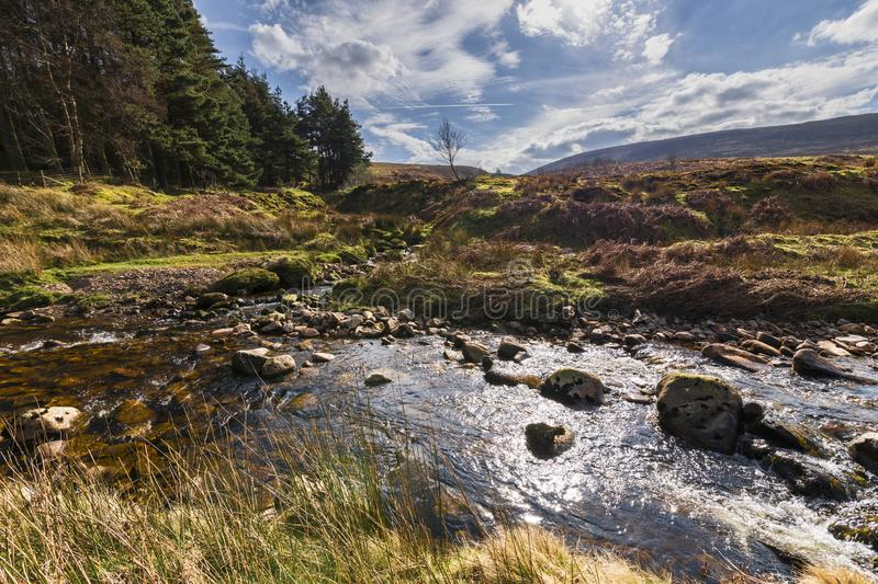 Confluence of waters. A confluence of waters. Near Costy Clough feeding into a juvenile River Hodder, Forest of Bowland, Lancashire, England stock images