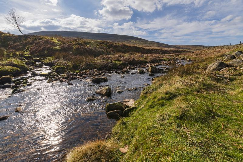 Confluence of waters. A confluence of waters. Near Costy Clough feeding into a juvenile River Hodder, Forest of Bowland, Lancashire, England stock photos