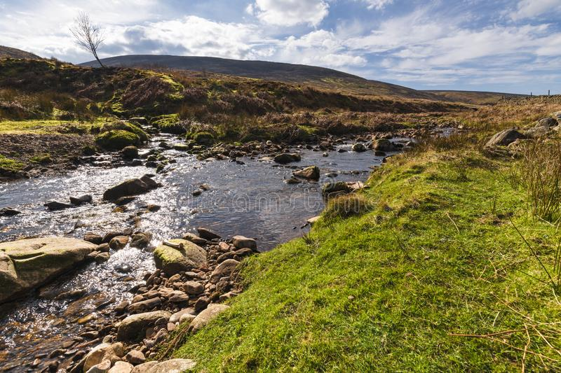 Confluence of waters. A confluence of waters. Near Costy Clough feeding into a juvenile River Hodder, Forest of Bowland, Lancashire, England royalty free stock photos