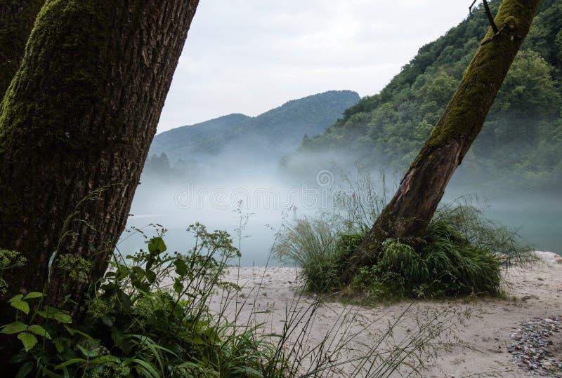 Confluent brumeux de rivière de Soca et de Tolminka en Slovénie images libres de droits