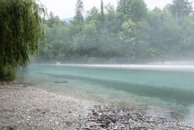 Confluent brumeux de rivière de Soca et de Tolminka en Slovénie image libre de droits