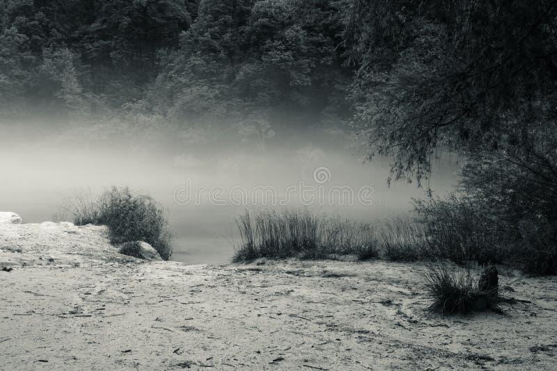 Confluent brumeux de rivière de Soca et de Tolminka en Slovénie photographie stock